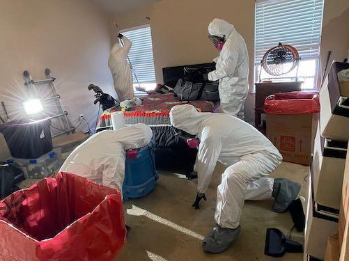 Homicide Clean Up